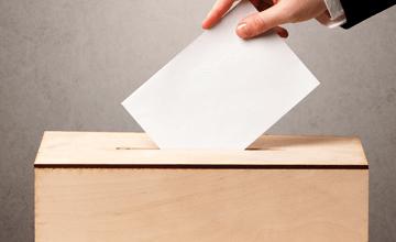 A więc wojna! – wybory w Piasecznie czyli lokalny dzień świra